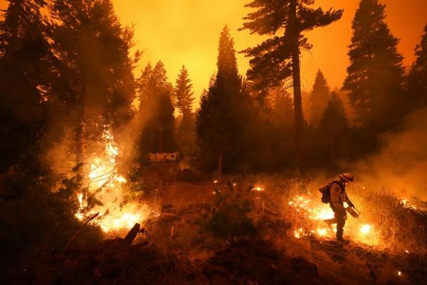 ▲미국 캘리포니아주 셰이버호에서 6일(현지시간) 소방관이 산불 진화 작업을 하고 있다. 셰이버호/AP뉴시스