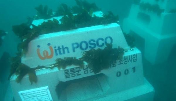 ▲포스코가 바다숲 조성 및 해양생태계 복원을 위해 울릉도 해역에 인공어초 '트리톤(Triton)'어초 100기와 블록 750개를 설치했다. (사진제공=포스코)