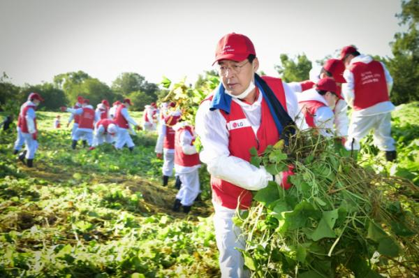 ▲신학철 LG화학 부회장을 비롯한 임직원들이 밤섬 생태계교란식물을 제거하고 있다. (사진제공=LG화학)