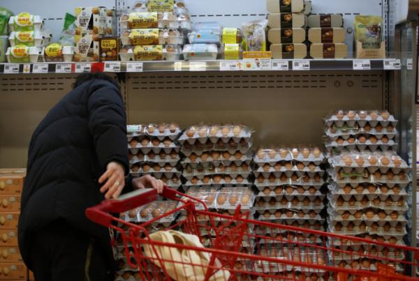 ▲한파에 조류인플루엔자, 설 명절까지 겹치면서 장바구니 물가 오름세가 심상치 않다. 서울의 한 대형마트에서 소비자가 계란을 살펴보고 있다. (연합뉴스)