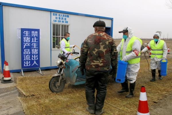 ▲2019년 2월 26일 중국 후베이성에서 아프리카돼지열병(ASF)이 검출된 양돈농가로 통하는 도로 검문소에서 방호복 차림의 근로자들이 차량을 소독하고 있다. 후베이성/로이터연합뉴스