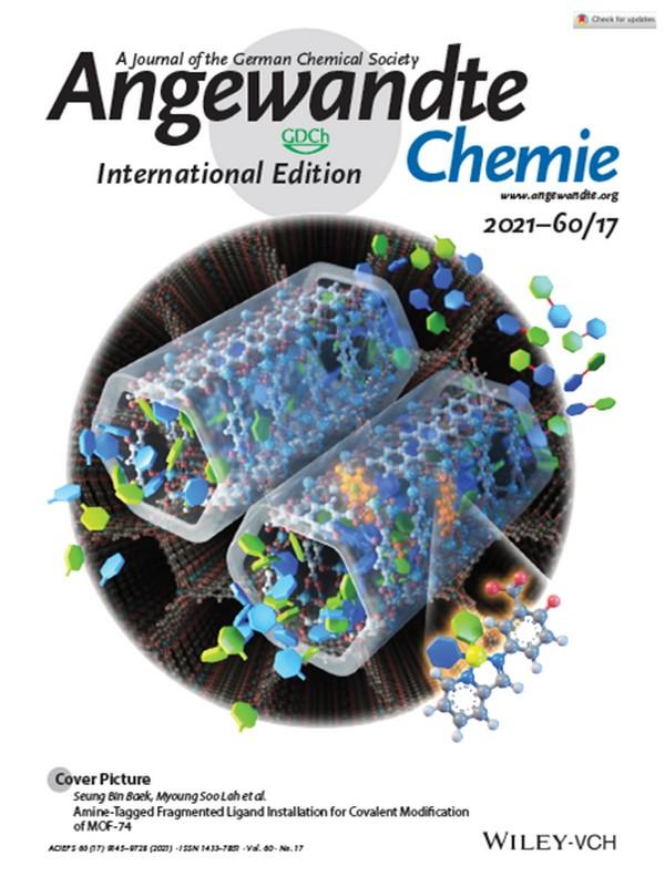 ▲앙게반테케미(Angewandte Chemie) 표지 그림. (사진제공=울산과학기술원)