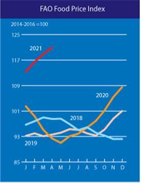 ▲유엔식량농업기구(FAO)의 세계식량가격지수 추이. (자료제공=농림축산식품부)
