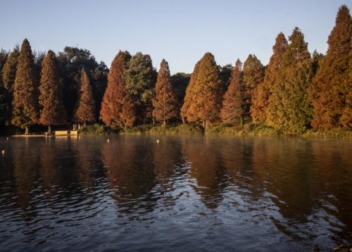 ▲남아프리카 요하네스버그에 위치한 저수지 풍경이 보인다. 요하네스버그/EPA연합뉴스