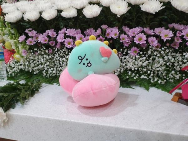 ▲故손정민 씨 친구들이 손 씨에게 마지막 선물로 전한 인형. (출처=손정민 씨 아버지 블로그 캡처)