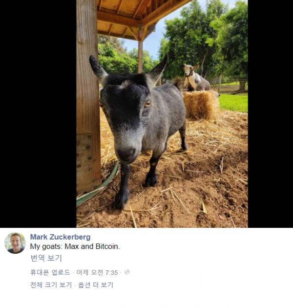 ▲마크 저커버그 페이스북 최고경영자(CEO)의 페이스북 게시물 캡처.
