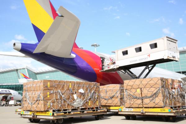 ▲인천국제공항 제1여객터미널에서 아시아나항공 및 조업사 직원들이 화물기로 개조한 A350 항공기 기내에 수출화물을 탑재하고 있다. (사진제공=아시아나항공)