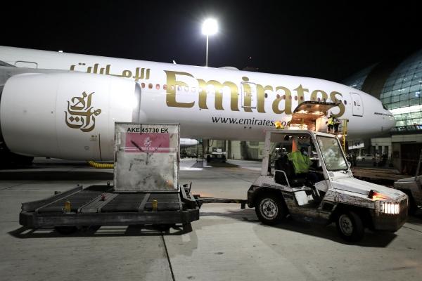 ▲아랍에미리트 두바이 공항에 2월 21일(현지시간) 에미레에이트항공의 보잉777기가 화이자 백신을 운송하고 있다. 두바이/AP뉴시스