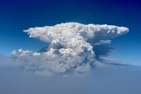 ▲지난 6일(현지시각) 미국 오리건주(州)에서 시작한 '부트레그' 산불이 2주일 넘게 이어지면서 연기와 잿가루가 섞여 10㎞ 높이에 달하는 대형 불구름이 형성됐다. (A/연합뉴스)