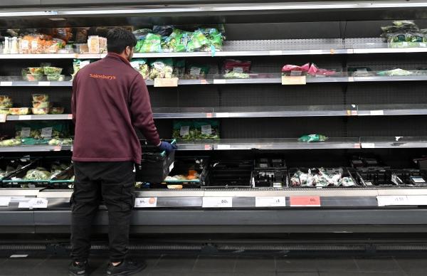 ▲영국 런던에 있는 센즈베리 슈퍼마켓에서 7일(현지시간) 한 직원이 비어있는 매대에 채소와 샐러드 잎사귀를 채워 넣고 있다. 런던/AFP연합뉴스